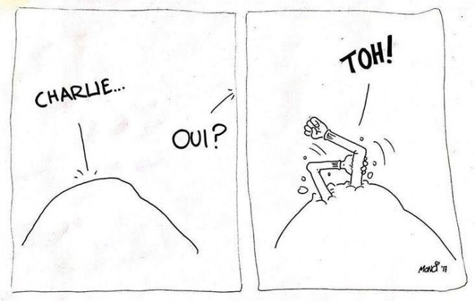 vignette-contro-charlie-hebdo-12